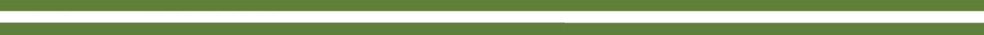 de Rotterdamse vlag met groen/wit/groen strepen